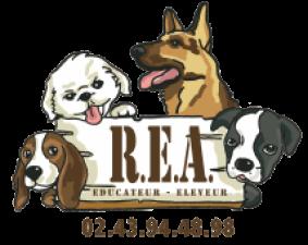 Élevage Canin Réa sur Made-in-sarthe